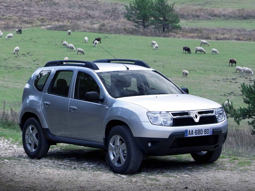 Renault-Duster-с-овцами