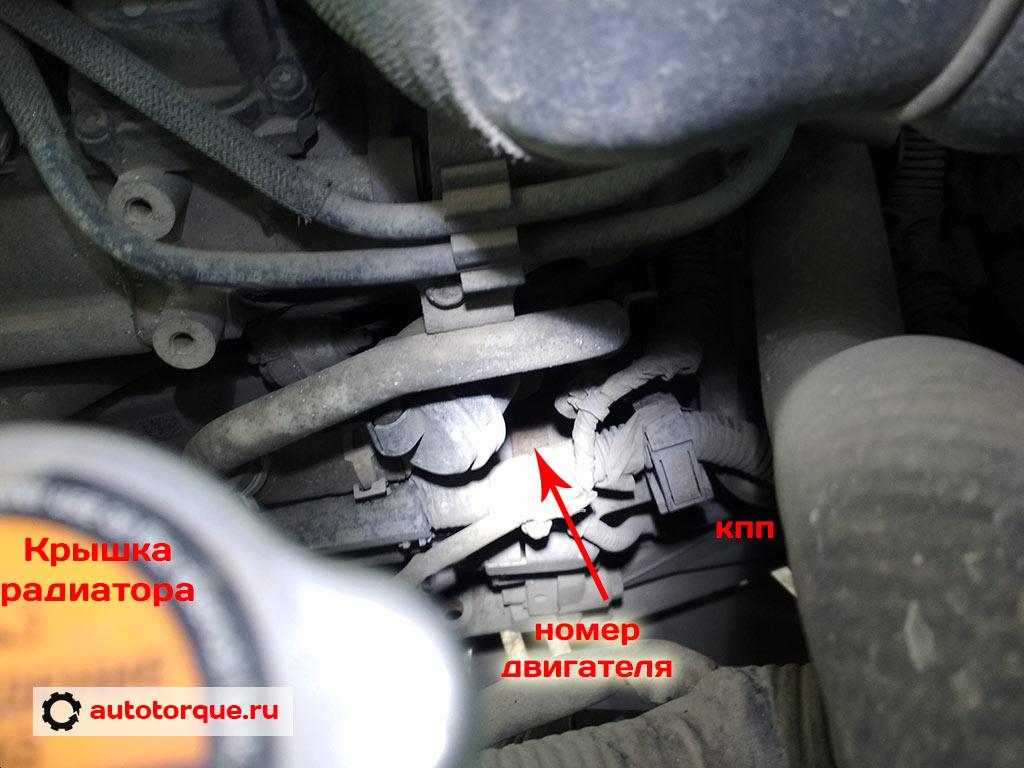 номер-двигателя-дизель-M9R